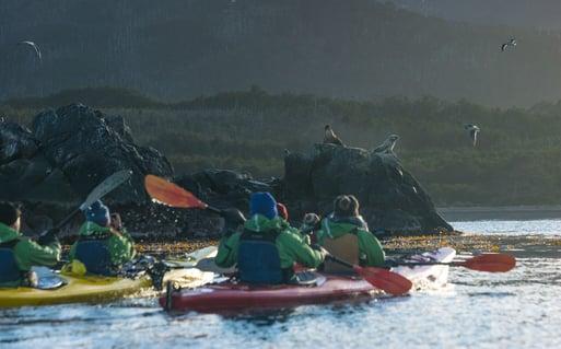 Kayaking Magellan Strait