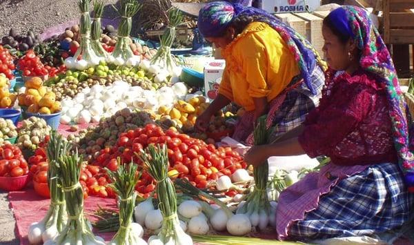 journey mexico oaxaca-market