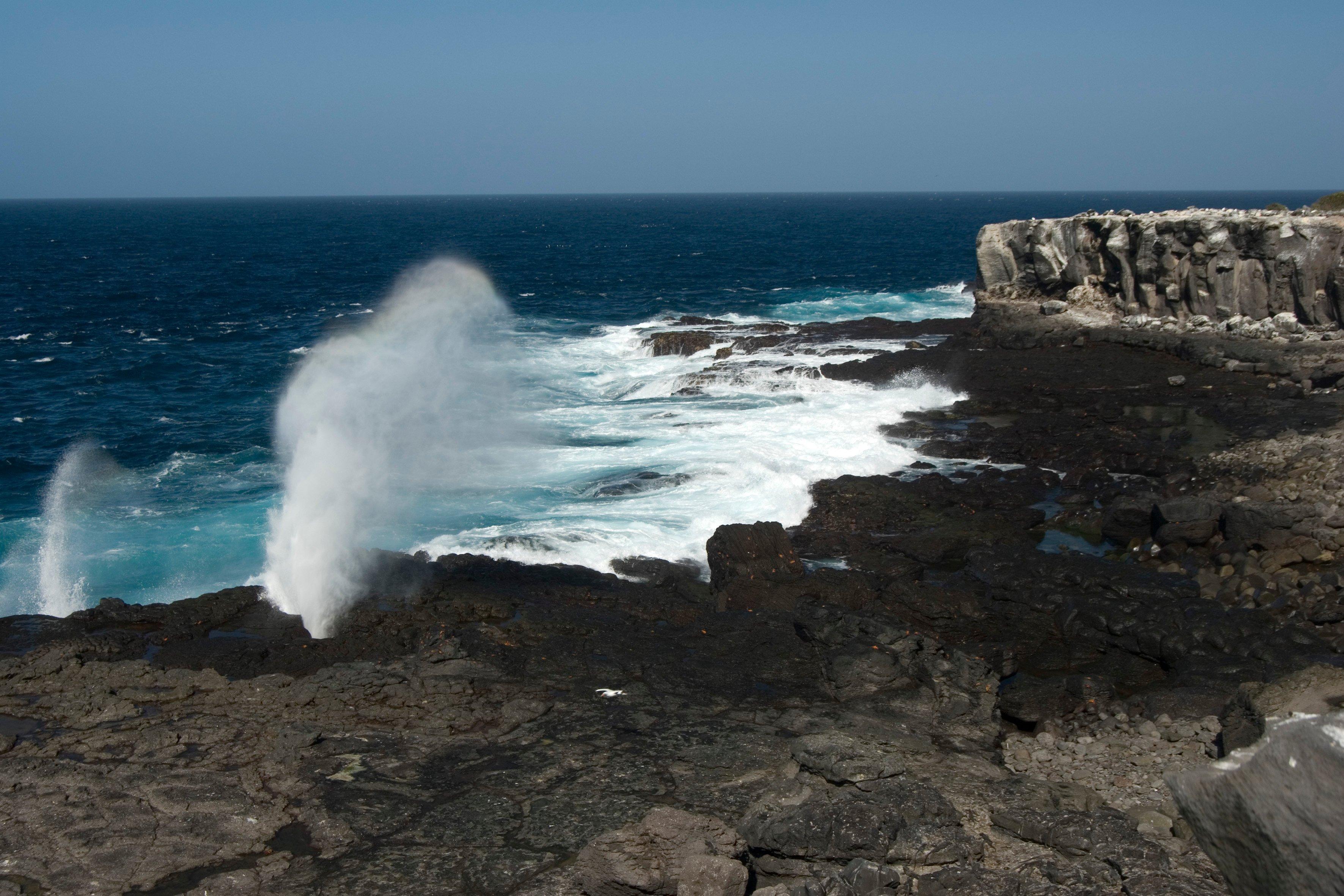 galapagos_ktpartners_española island shore