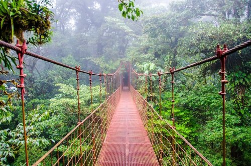 monteverde hanging bridge