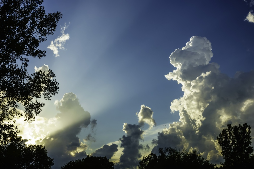 Transitional light show on a summer evening Crepuscular rays light up a partly cloudy sky, with trees in silhouette, July in northern Illinois