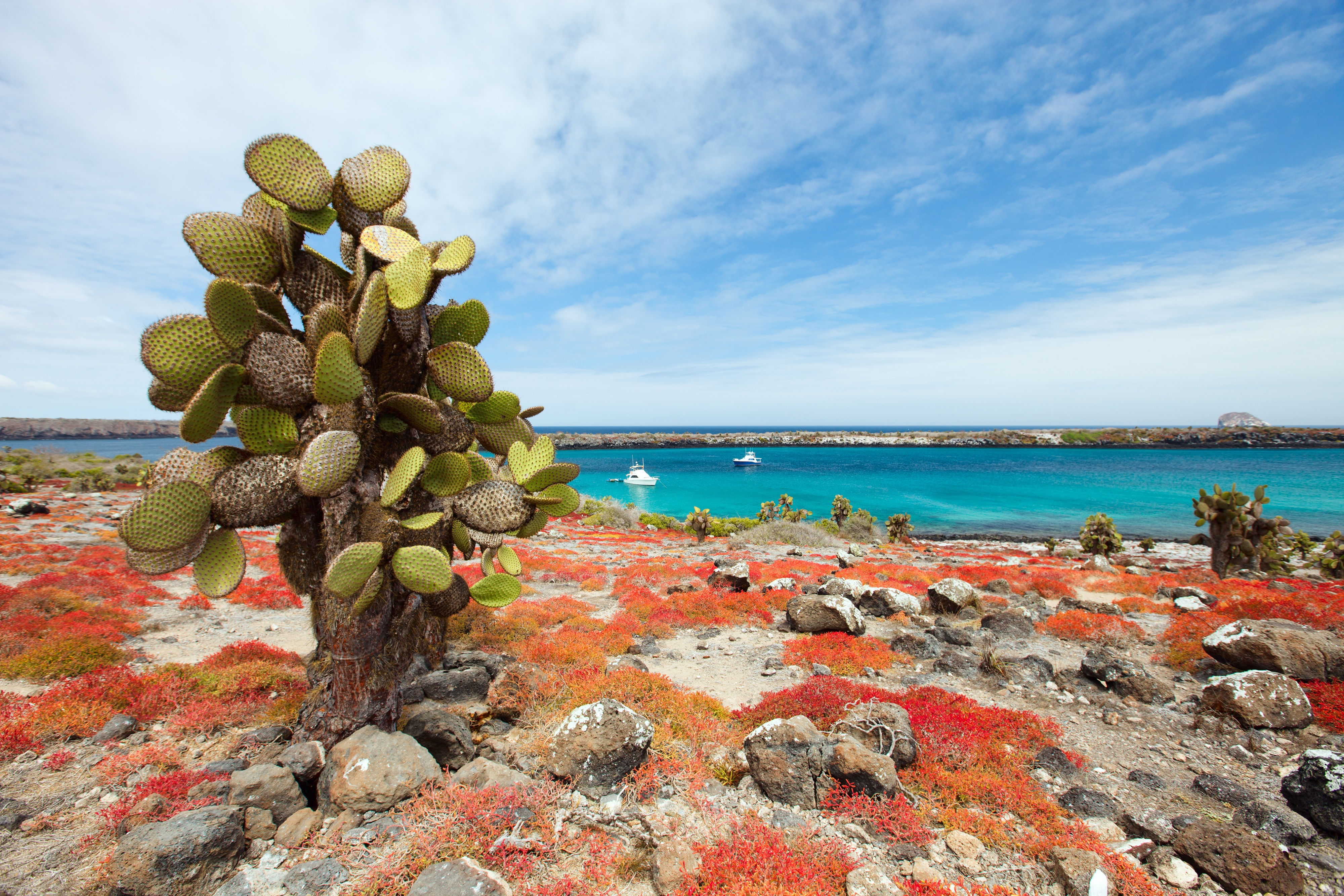 Top 5 Islands to Visit in the Galapagos